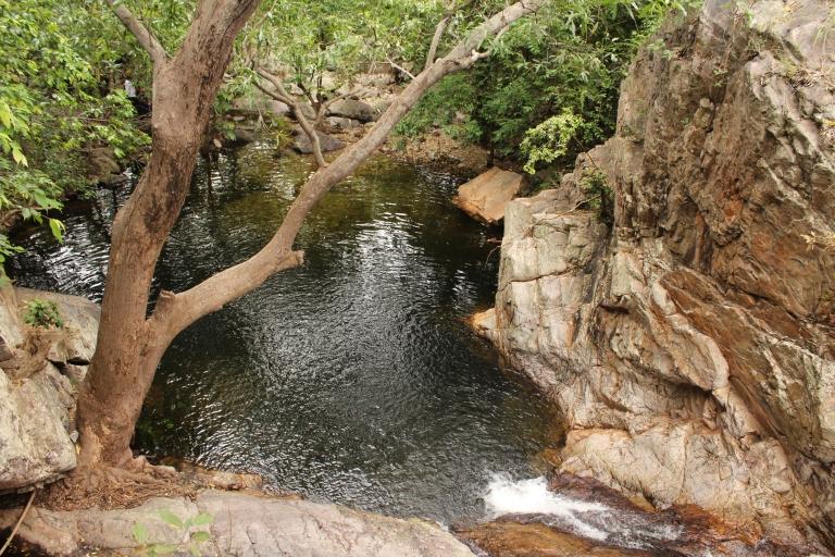 Nagalapuram Forest Trek