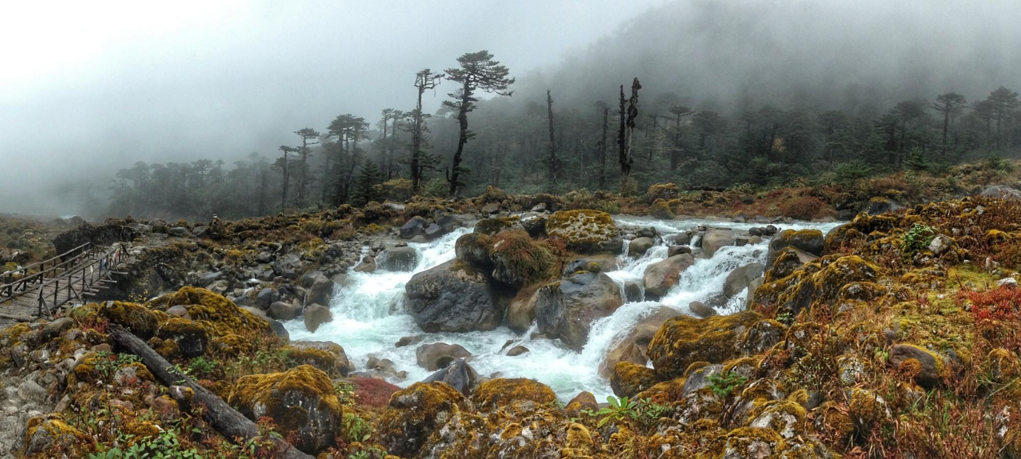 Dreamy landscape: Goechala Trek