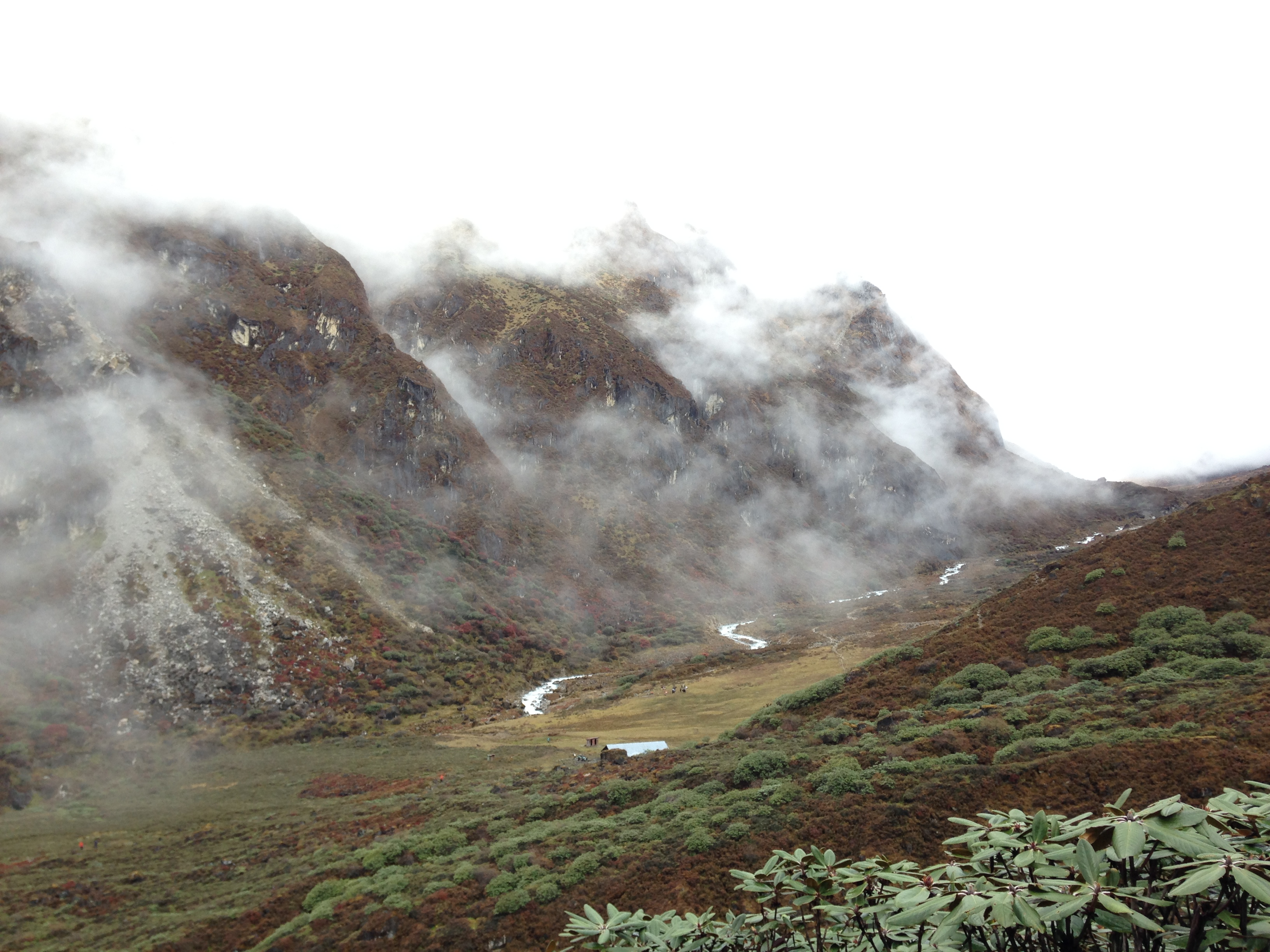 Misty Mountains: Goechala Trek