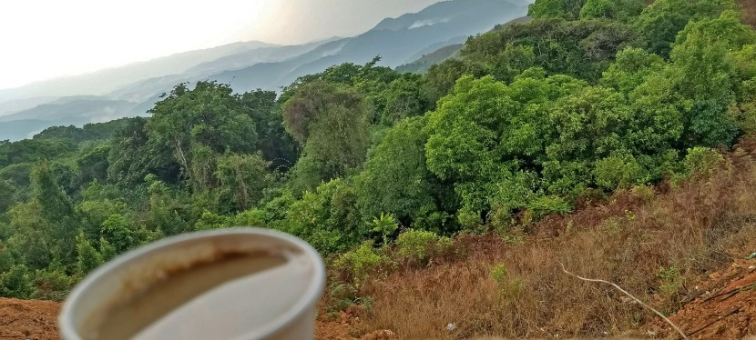 Coffee With A View At Mandalpatti, Coorg